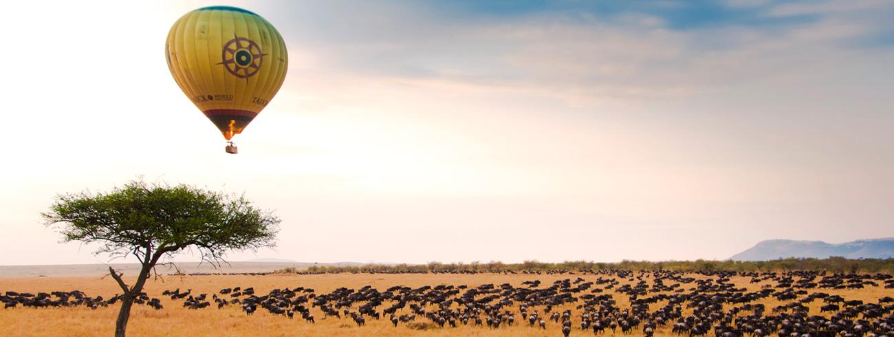 best-of-kenya-safari
